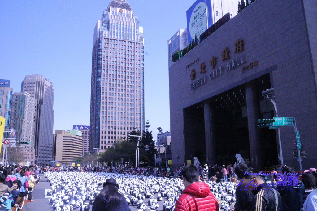 【1600貓熊世界之旅-台北】紙貓熊萌翻模樣超療癒!2/28~3/9在市府