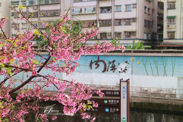 【東湖站】最容易到達的賞花景點 樂活公園寒櫻炸開還能賞夜櫻~週邊美食推(2/17)
